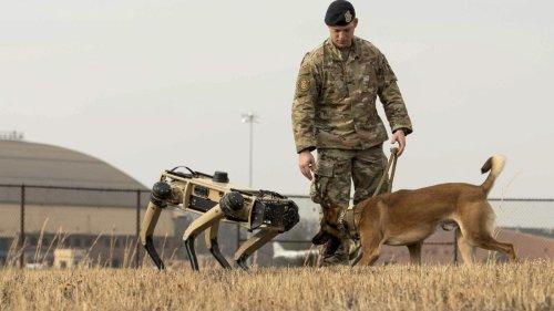 US-Waffenhersteller zeigt hundeähnlichen Roboter als Scharfschützen