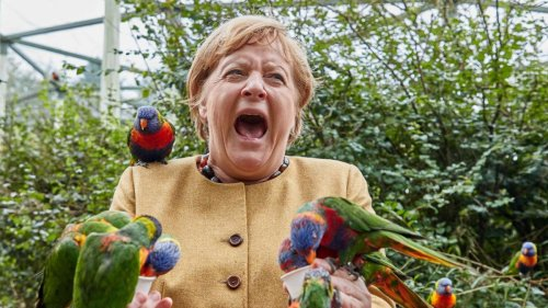 Als Hitchcock-Merkel gruselt man alle