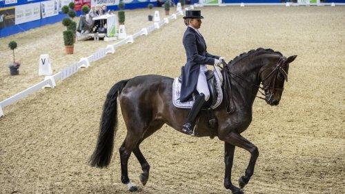 Stute von deutscher Olympiasiegerin bricht bei Siegerehrung plötzlich zusammen