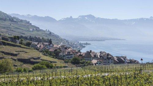 Bis zu 33.000 Euro pro Quadratmeter – die Schweiz lockt trotzdem mehr Deutsche