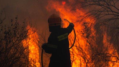 """""""Hinter uns ist die Hölle"""" – Europas Urlaubsparadiese kämpfen gegen Brände"""