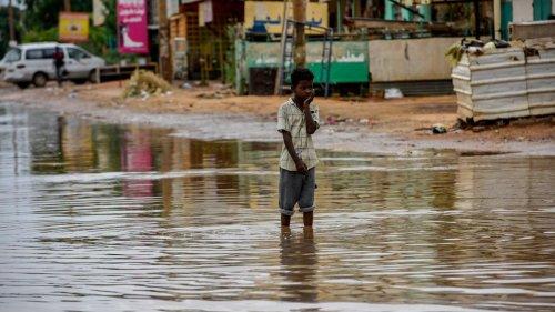 Schädlingsausbrüche, politische Instabilität – Klimawandel trifft Afrika besonders hart