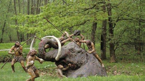 So tödlich waren die Fernwaffen des Neandertalers