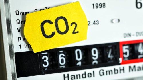 Regierungsberater stellt Klimaschutzgesetz infrage