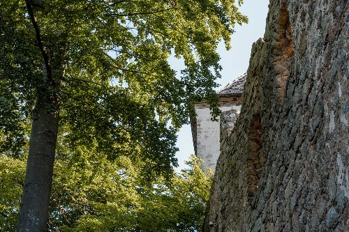 Wandern auf den Regensburger Burgensteigen - Weltnah