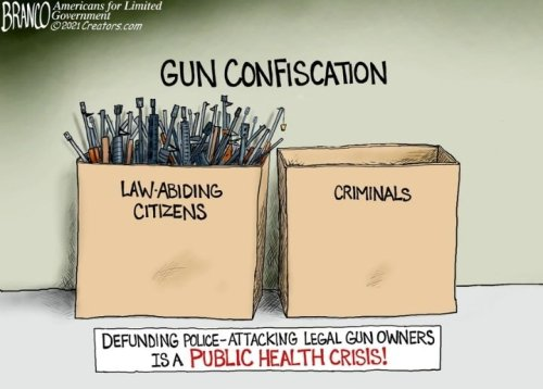 Conservative Cartoons cover image