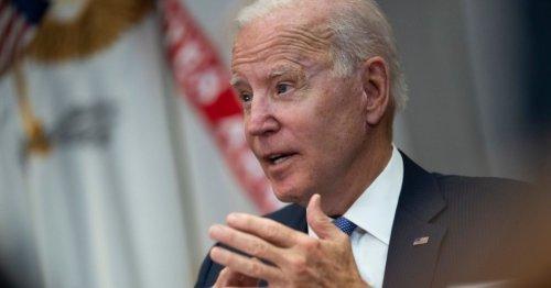 Lobbyist Brother of Top Biden Aide Sees Skyrocketing Business Since Biden Became POTUS