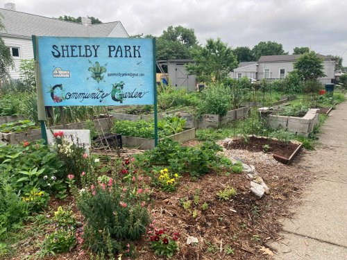 Louisville Loosens Restrictions To Cultivate More Community Gardens