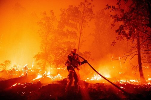 Gender Reveal Is Responsible For Burning Over 10,000 Acres And Counting In California Right Now