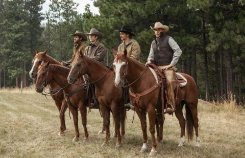 7 Shows To Binge While You Wait For The Return Of 'Yellowstone'
