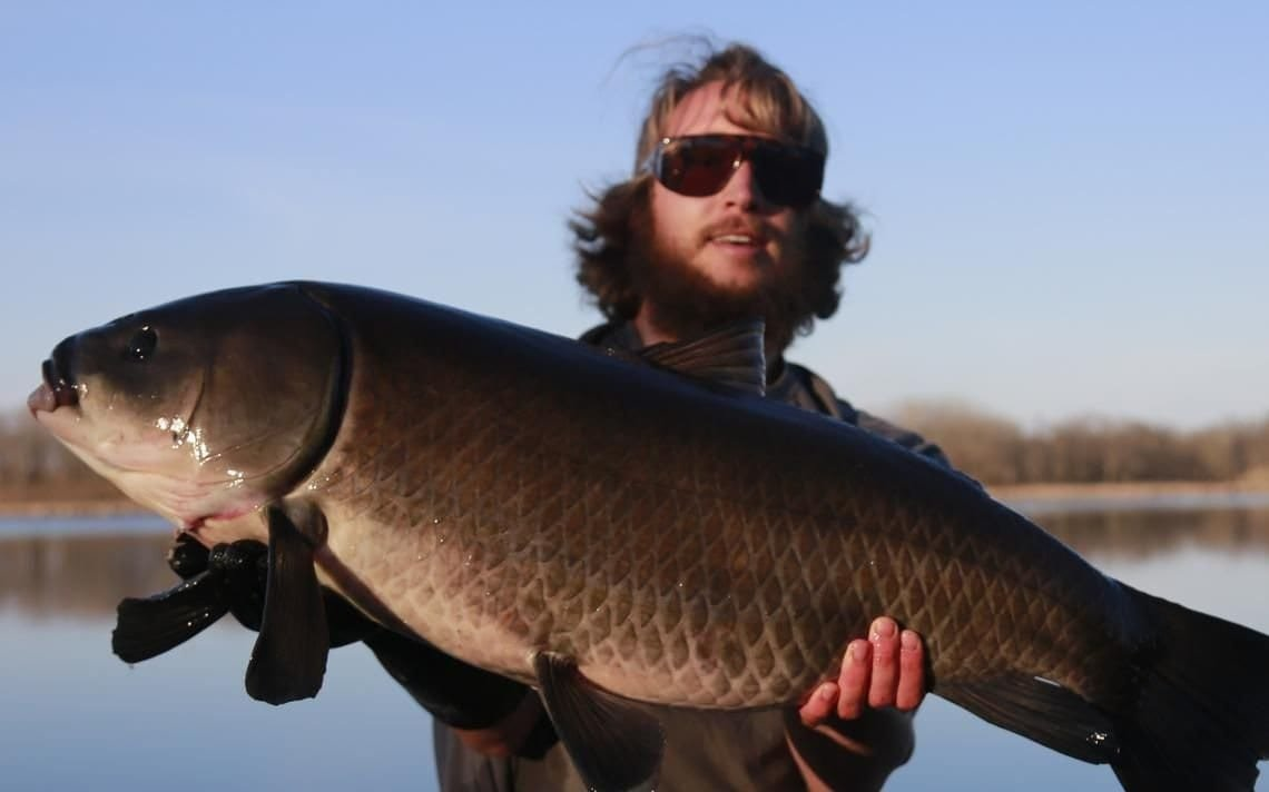 Minnesota Man Catches 112 Year Old Bigmouth Buffalo, The Oldest Freshwater Fish Ever Caught