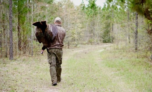 Hunting Participation And Turkey Harvests Decline Across Midwest This Year