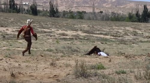 Massive Golden Eagle Tries To Fly Off With 8-Year-Old Girl