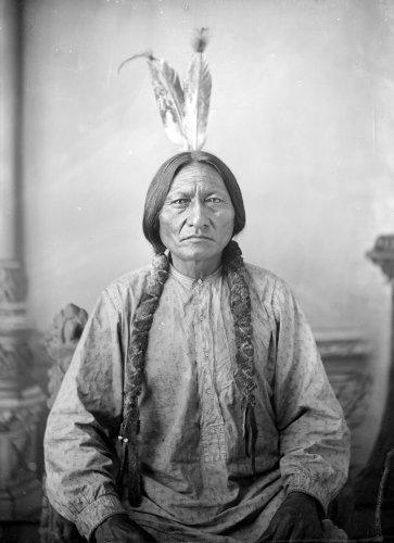 Sitting Bull cover image