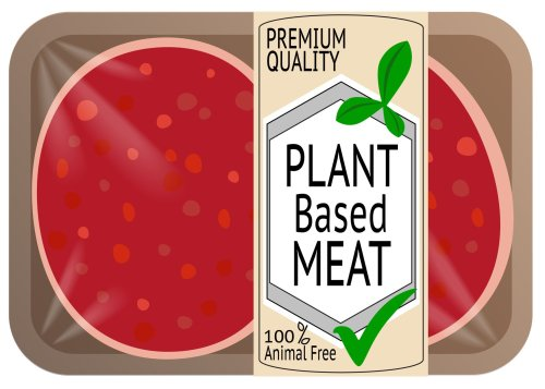 SPECIAL REPORT: Plant-based meat formulation in focus, from Beyond Meat to Motif FoodWorks, Roquette, and Cargill: 'The meat alternative space has the fastest iteration cycles out there'