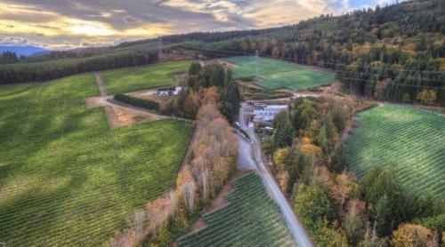 Canada's Exciting Western Edge: The Wine Islands – wineanorak.com