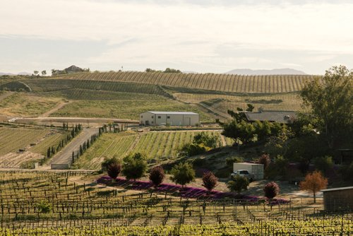 5 Destinations in Temecula and the South Coast