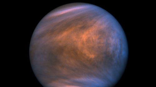 To find life on Venus, first we need to figure out life on Earth