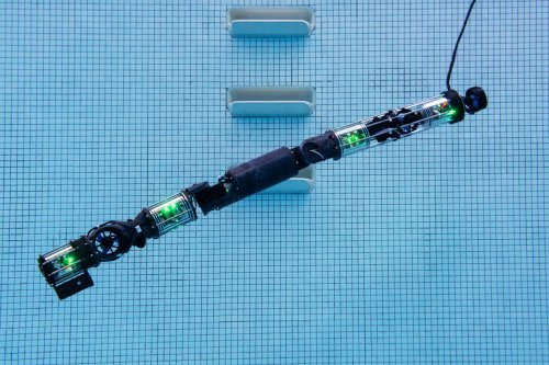 Watch a Snake Robot Go for a Swim