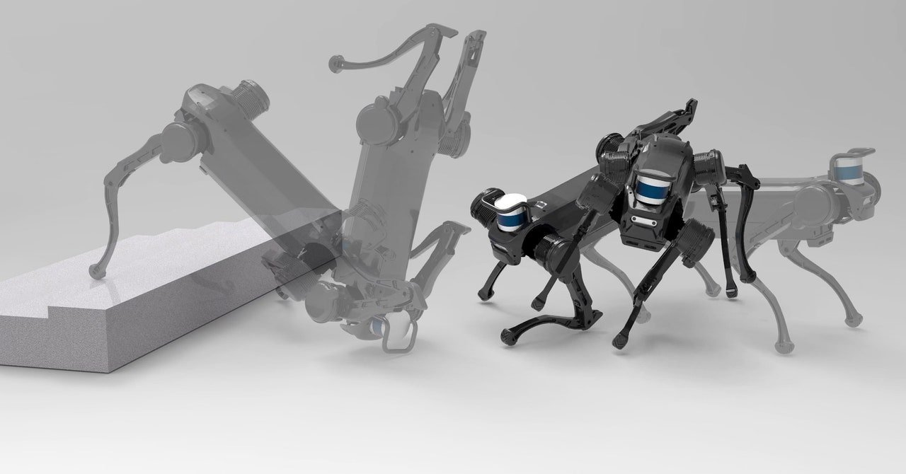 Watch a Robot Dog Learn How to Deftly Fend Off a Human