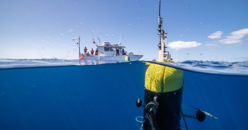 A Clever Robot Spies on Creatures in the Ocean's 'Twilight Zone'