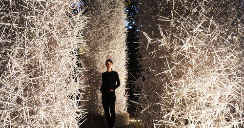 Huge, Elaborate Structures Made of Random Heaps of Plastic