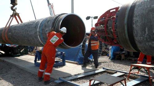 Umweltbundesamt-Präsident: Nord Stream 2 könnte Dinosaurier werden