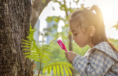 Spending time in nature has a surprising effect on early childhood development