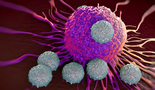 Researchers harness the power of nature to help improve anti-cancer antibody therapy