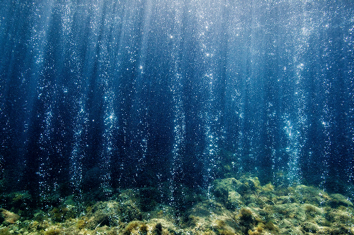 Could the ocean hold the key to reducing carbon dioxide in the atmosphere?