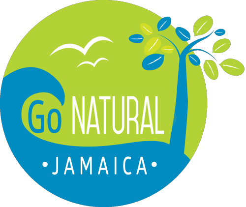 Yoga, Meditation, Detox and Wellness Retreats programs in Jamaica