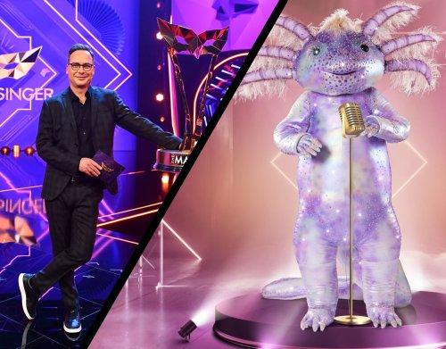 """Das Axolotl bei """"The Masked Singer"""": Wer könnte dahinter stecken?"""