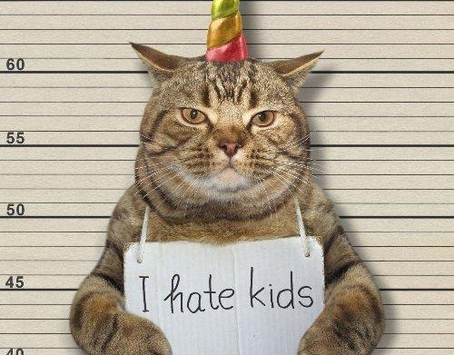 Daran erkennst du, dass dich deine Katze abgrundtief hasst - wmn