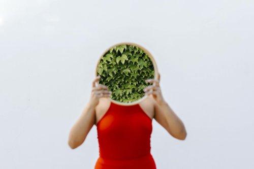 Chlorophylltropfen: Ein Wundermittel für deinen Körper?