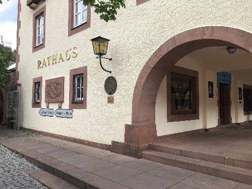 Sitzung des Stadtrates Annweiler: Videokonferenz
