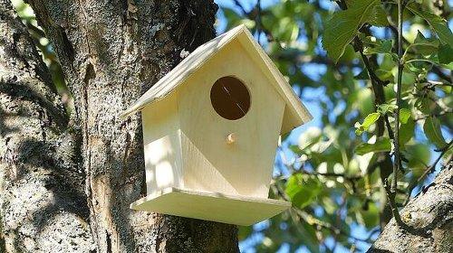 Nistkästen für die Vögel!