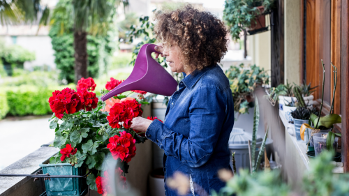 This Quick Watering Trick Will Keep Your Plants Alive While You're on Vacation