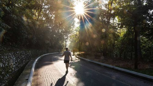 3 Reasons Why You Should Get Out Of Your House For A Wellness Walk