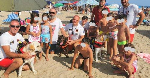 3 chiens sauveteurs sauvent 14 personnes, dont 8 enfants, emportées par la mer
