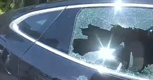 La police casse une vitre pour tenter d'extraire un chien enfermé dans une voiture au soleil à plus de 45 degrés ! (vidéo)