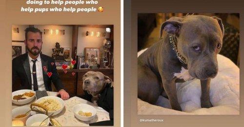 L'actrice Jennifer Aniston salue le travail de son ex-mari, Justin Theroux, avec une association de sauvetage ayant permis de sauver 60 chiens