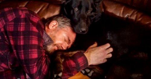 Une cagnotte en ligne ouverte pour les soins du chien d'assistance d'un vétéran de l'armée