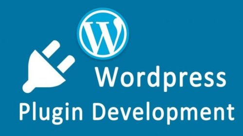 The Beginner's Guide to WordPress Plugin Development- WordPress India