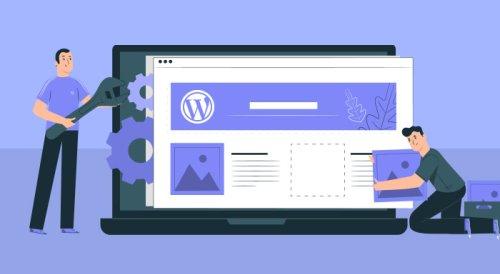 Custom WordPress Theme Vs Theme Customization - WordPress India