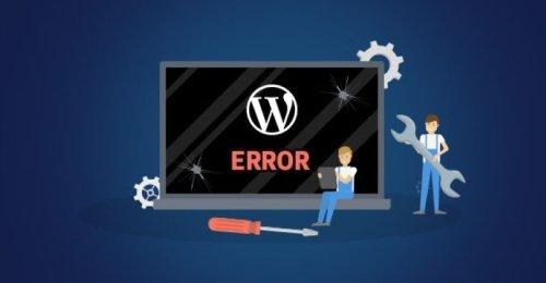 Common WordPress Development Errors And Problems