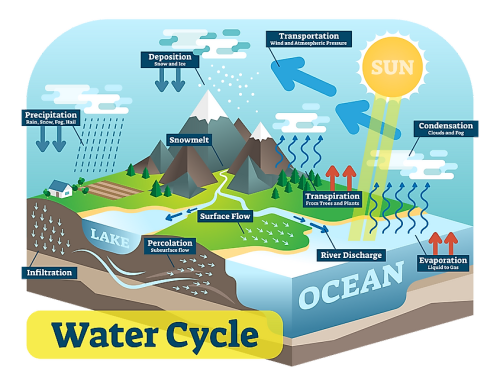 How Is Climate Change Impacting The Water Cycle?