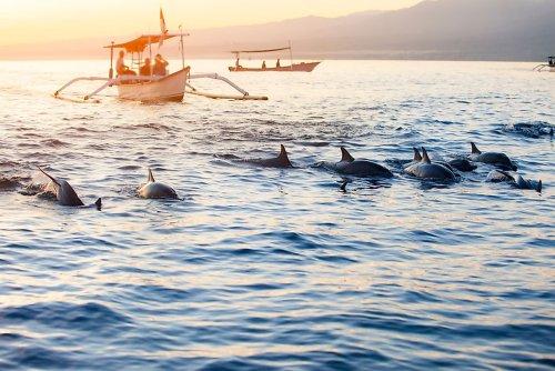 Where Is The Bali Sea?