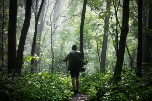 America's 10 Best Long-Distance Hiking Trails