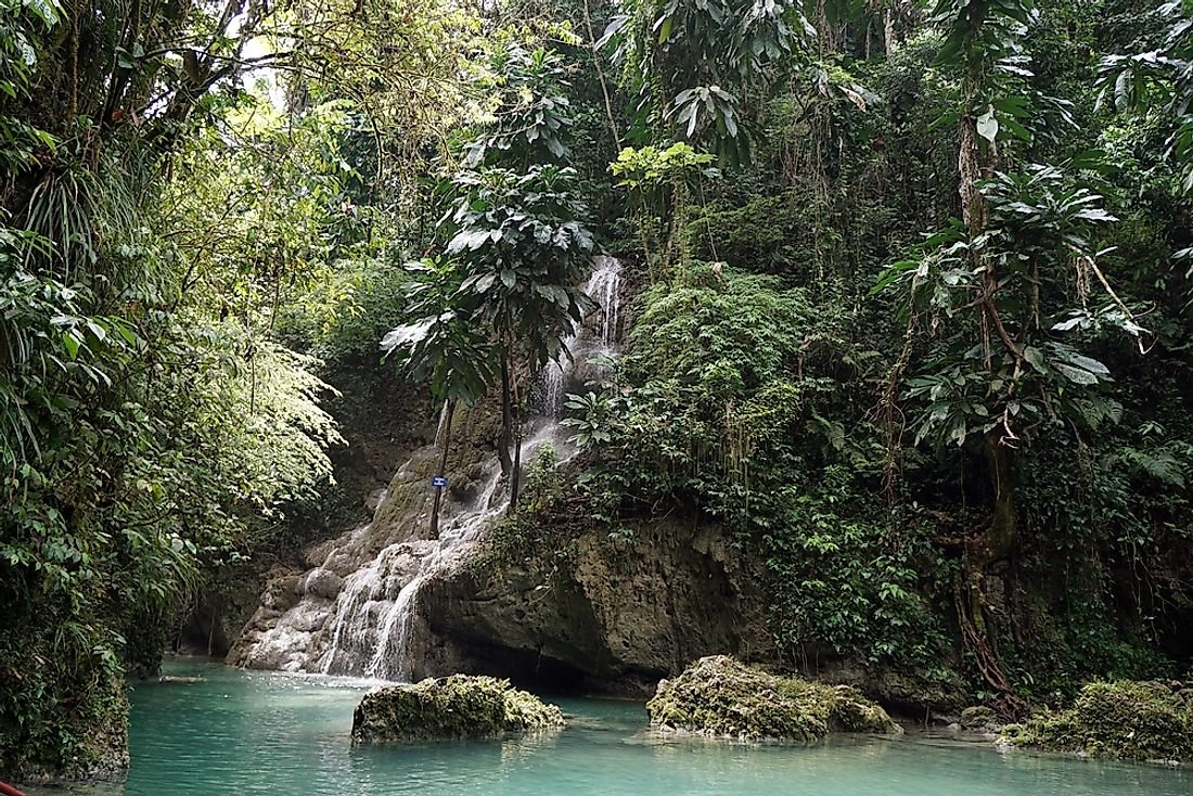 What is a Tropical Rainforest Climate?