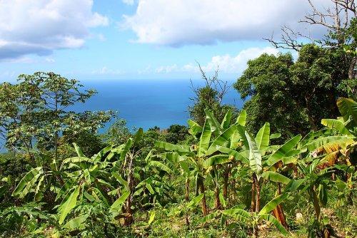 Tourist Attractions in the British Virgin Islands